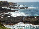 Basalt-Shore-Platforms-Phillip-Island