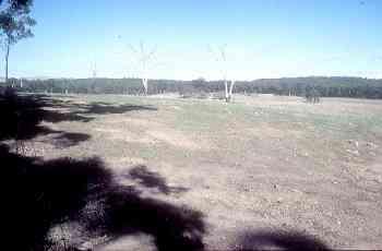 Tillite field
