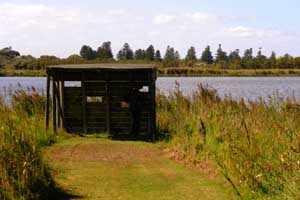Lake Pertobe