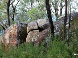 Bunyip-State-Park—rocks-and-trees